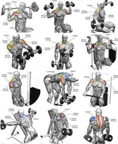 All Workout | Posted by: NewHowtoLoseBellyFat.com