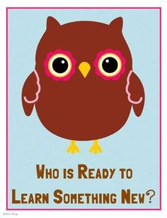 Learning is a Hoot Classroom Decor $2.50 Includes three classroom posters, plus editable labels and banner.