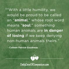 """""""With a little humility, we would be proud to be called an """"animal,"""" whose root word means """"soul,"""" something human animals are in danger of losing if we keep denying non-human animals theirs. Reasons To Be Vegan, Vegan Quotes, Vegan Memes, Witty Remarks, Root Words, Why Vegan, Peace On Earth, Do You Know What, Stop Eating"""