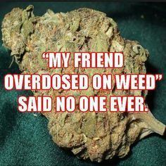 """""""My friend overdoes on weed"""" Said no one ever."""