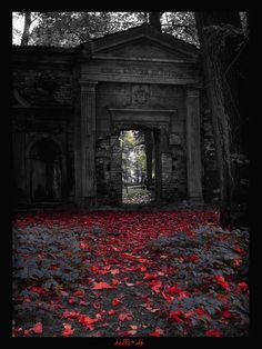 Cemetery gates, a physical representation of the barrier between life and death. The colors, the mood in this one? *chills*
