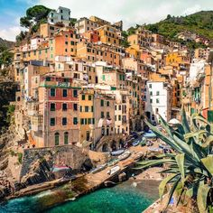 Hello Riomaggiore  As a part of Cinque Terre with less than 2000 lucky inhabitants this village is our favourite  by traveling.couple