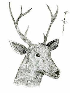 Elk. Elk, Moose Art, My Arts, Animals, Animales, Animaux, Moose, Elks, Animal