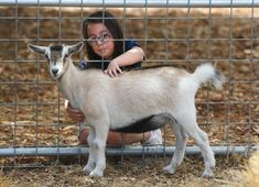 You've just got goats for your children as pets, or some chickens and plan to have your own eggs? Do you think your insurance company is okay with you having animals on the property? You get in touch with your insurance agent to double-check your policy.