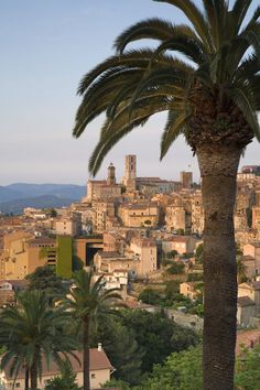 size: Photographic Print: Poster of Grasse, Provence, France by Doug Pearson : Artists Menton France, La Provence France, Grasse France, Places To Travel, Places To See, San Tropez, Juan Les Pins, Valensole, Voyage Europe