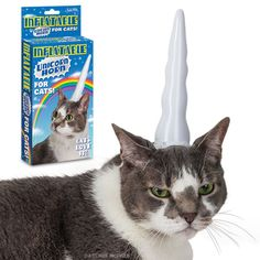 """Inflatable Unicorn Horn for Cats The box says """"Cats love it"""". Oh, yeah, sure looks like it in the pic."""