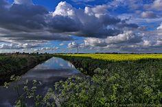 Field in spring by Michael Stöhr on 500px © www.HDR-Fotos.de