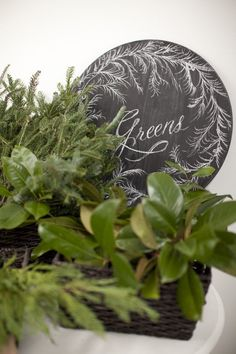 Two of our all-time favorite vendors –Salt Harbor Designs + Millie Holloman Photography – joined forces to get us all in the holiday spirit! Their fun and festive Christmas DIY potluck is not only an amazing an idea for bringing a little crafting cheer to your friends and family and getting your home holiday-ready but […]