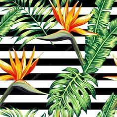 Resultado de imagem para floral tropical