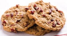 Oatmeal Cookies Recipes Recipes: Easy To Do Chocolate Oatmeal Cookies Oatmeal Cookies Recipes. Cookies can be chewy or chunky. Some are made with fruits, nuts, candies but most cookies come with ch… Cranberry Tea, Cranberry Cookies, Holiday Cookies, Cranberry Recipes, Oatmeal Cookie Recipes, Oatmeal Cookies, Raisin Cookies, Chip Cookies, Date Cookies