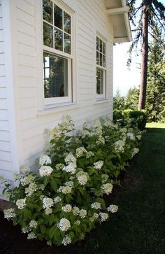 Farmhouse Landscaping Front Yard Ideas: 20 Gorgeous Photos 2019 Farmhouse landscapes The post Farmhouse Landscaping Front Yard Ideas: 20 Gorgeous Photos 2019 appeared first on Landscape Diy. Farmhouse Landscaping, Farmhouse Garden, Home Landscaping, Garden Cottage, Front Yard Landscaping, Country Farmhouse, Hydrangea Landscaping, Privacy Landscaping, Farmhouse Front