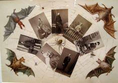2.8.10: Jill Krementz covers The Art of Victorian Photocollage | New York Social Diary
