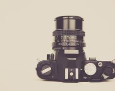 Magdeleine :: free stock photos