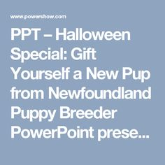 PPT – Halloween Special: Gift Yourself a New Pup from Newfoundland Puppy Breeder PowerPoint presentation | free to download  - id: 84ba30-MjNkM