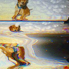 #motionstudy  #longexposure #databending #waves #digitalism #photomanipulation #abstractphotography #glitchart #glitch #designdistrict #scanography #puppy