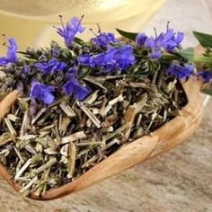 How To Dry Basil, Herbs, Food, Plant, Essen, Herb, Meals, Yemek, Eten