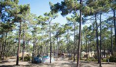 Camping Huttopia Lac de Carcans - Campingfrankrijk.eu