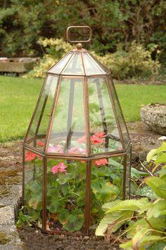 beautiful garden cloche