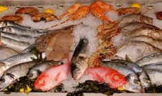 Fresh Seafood Best Places to Dine and Party in St Tropez France.