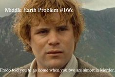 Frodo told you to go home when you two are almost in Mordor