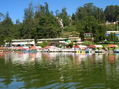 Ooty is one of the famous tourist destinations in India and is situated in Tamil Nadu state. This is a beautiful place which is located between the Nilgiri Hills. There you can see the real natural…