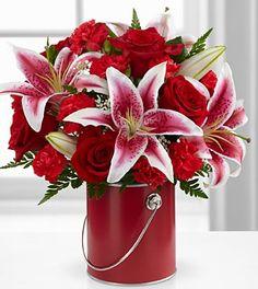 valentine's day auckland new zealand