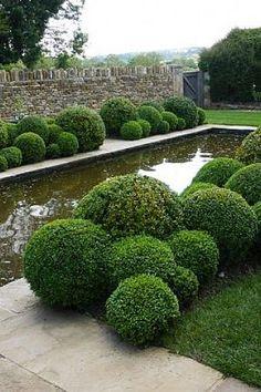 Jake Hobson, cloud pruning Great contrast of textures Boxwood Garden, Topiary Garden, Garden Shrubs, Garden Landscaping, Formal Gardens, Outdoor Gardens, Landscape Architecture, Landscape Design, Cloud Pruning