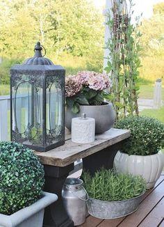 displaying plants on the porch via strandviksvillan bank for blommorna Rustic Garden Decor, Rustic Gardens, Outdoor Gardens, Back Gardens, Small Gardens, Garden Projects, Garden Cottage, Garden Inspiration, Backyard Landscaping