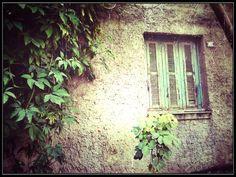 372- Janela solitária #umafotopordia #picoftheday #brasil #brazil #n8 #snapseed #pixlromatic+