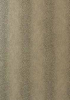 MAMBA, Grey on Metallic Silver, AT7921, Collection Watermark from Anna French