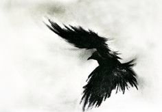 Original Charcoal Crow Drawing Flying raven Large Gothic Art 27''x40'' by AbstractArtM on Etsy https://www.etsy.com/listing/228976335/original-charcoal-crow-drawing-flying
