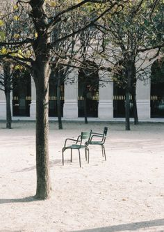 & Other Stories | Longing for springtime in Paris.