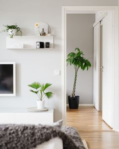 Bambula: BoKlok Niki Mound   A Living Room And A Convenient Storage  Solution Ikea Living