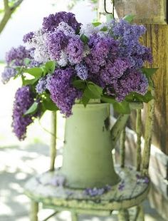 lilacs in antique green enamelware pitcher