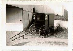 Amish antique  photographes | Antique photograph Amish Buggy Selling on ebay | Antique photographs