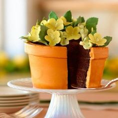 chocolate cake with chocolate truffle cream. A great (and yummy!) alternative to flowers