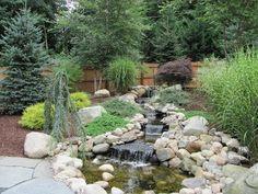 evergreen landscaping -