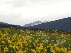 Mount Crested Butte, Colorado