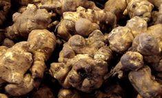 Přání k narozeninám   Chovani.eu Naha, Stuffed Mushrooms, Vegetables, Food, Stuff Mushrooms, Essen, Vegetable Recipes, Meals, Yemek