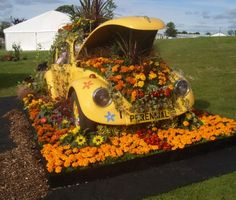 """""""Blooming Beetle On Road To Gold"""" -- [Flower power drove gardening charity Perennial  land-based college Oatridge's clapped-out VW Beetle to gold at Gardening Scotland. Co-designer with Oatridge horticultural team leader Ann Burns, Oatridge Suntrap Garden leader John Smith said the most colourful car in Scotland could now be recycled to make an entrance feature at nearby Bo'ness  Kinneil Railway.]~[source: http://sntrapgarden.wordpress.com/2009/06/08/blooming-beetle-on-road-to-gold/]"""