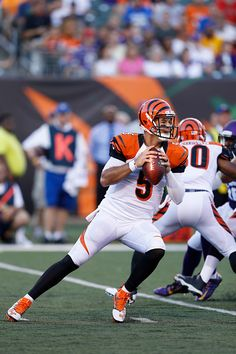 McCarron of the Cincinnati Bengals looks to pass the ball during an NFL preseason game against the Minnesota Vikings at Paul Brown Stadium on August...