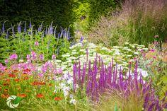cottage garden - Google Search
