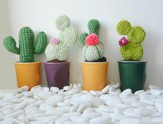 Cactus par Virginie Karakus