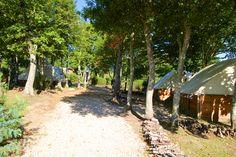 sentier menant aux tentes équipées en sous bois au camping le lac à carnac