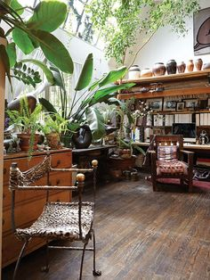 Would you like to live in such a #green and #wooden living room? #Lounge #Plant #Nature #office www.Your24hCoach.com