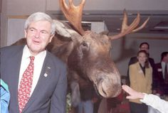 Newt with a moose in New Hampshire. Score for the 603.