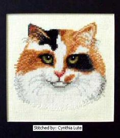 Calico - cross stitch pattern designed by Marv Schier. Category: Cats.