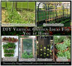 Hot | Happy House and Garden Social Site
