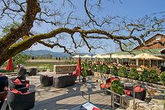 mumm napa... tasting patio! My favorite place to visit in the Napa Valley