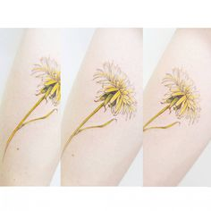 : a Dandelion flower . . #tattooistbanul